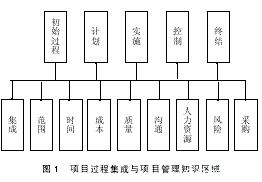 Image:项目过程集成与项目管理知识区域.jpg