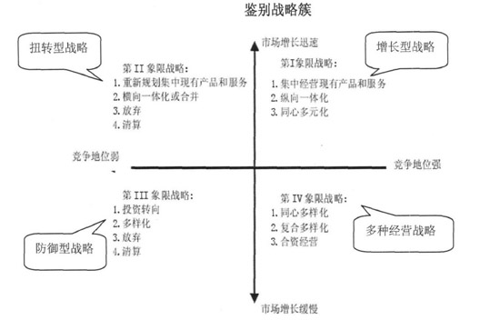 鉴别战略簇